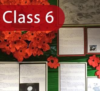 Class 6 Website